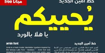 Amin Free Font