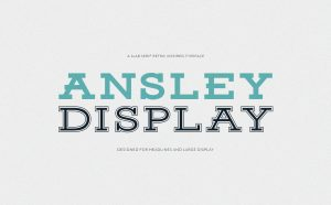 Ansley Display Free Font - serif