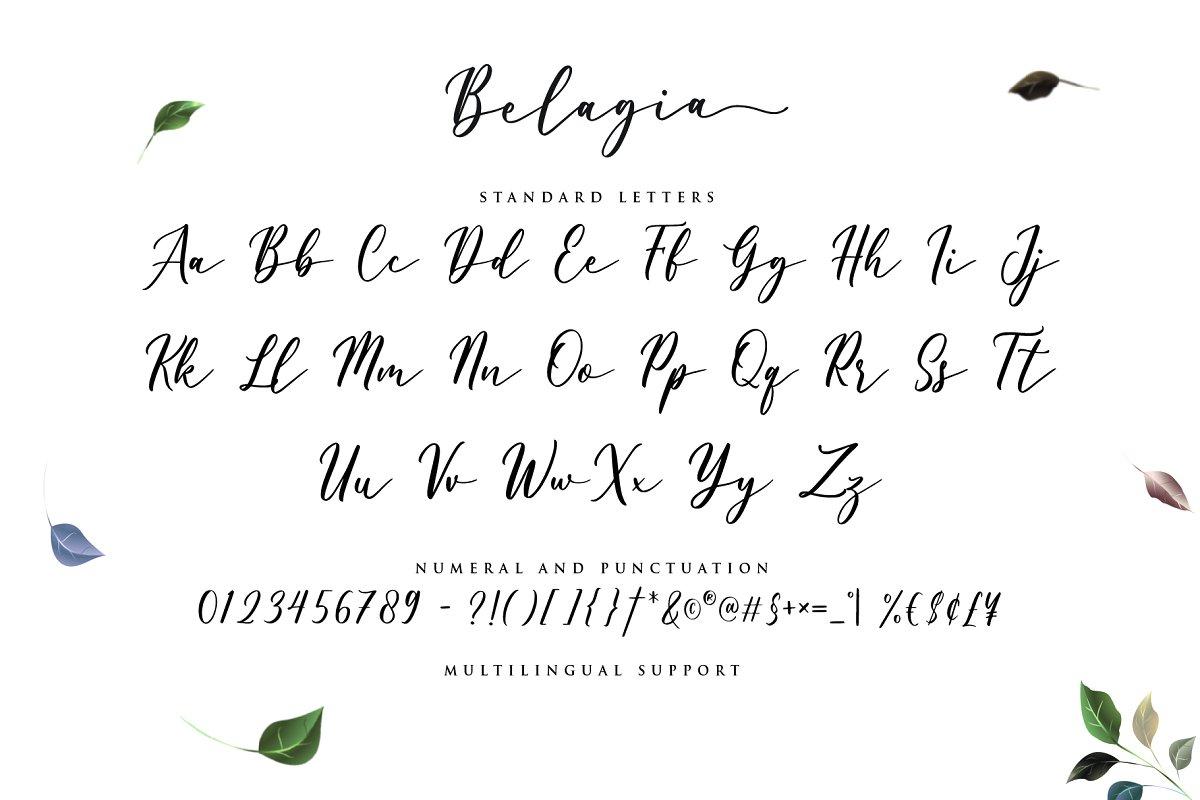 Belagia Free Font - script