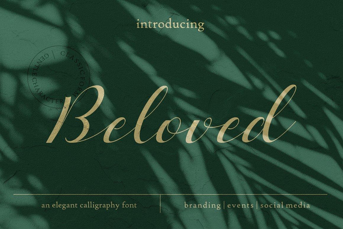 Beloved Free Script Font - script