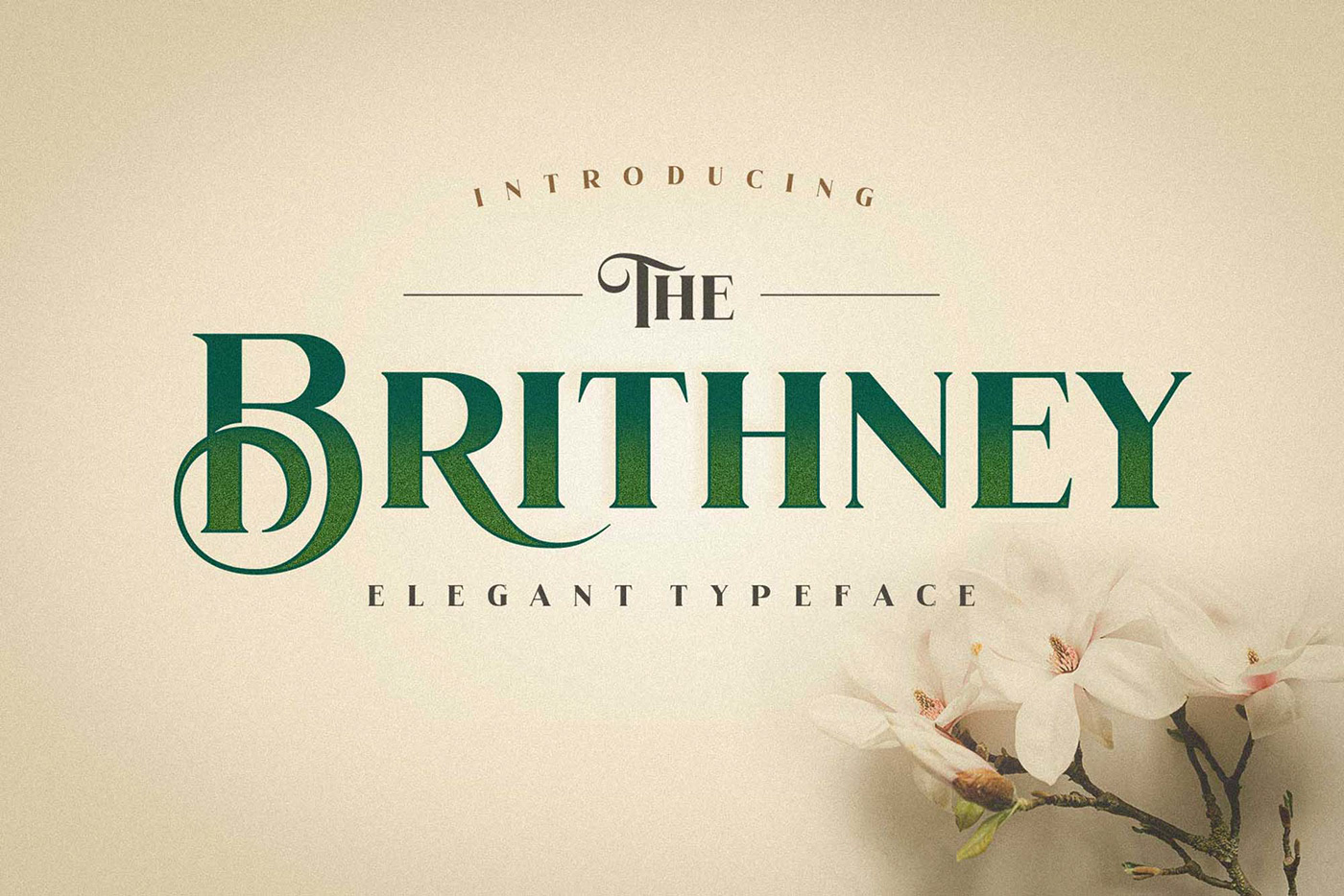 The Brithney Free Typeface - serif