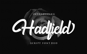 Hadfield Free Font - script
