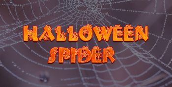 Halloween Spider Free Font - decorative