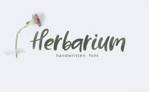 HERBARIUM Free Font - script