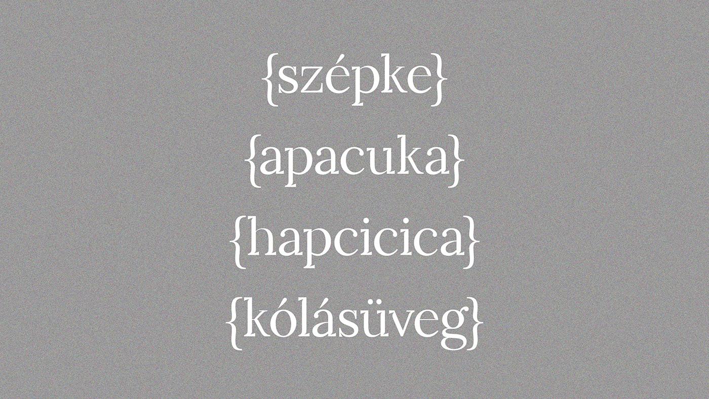 Leiko Free Font - serif