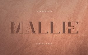 Mallie Free Font - decorative