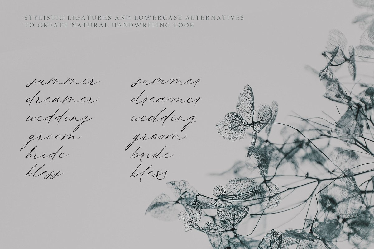 Queenly Free Font - script