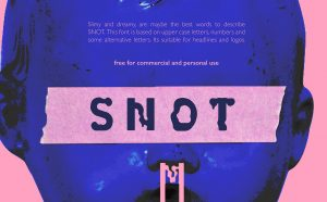 SNOT Free Font - decorative