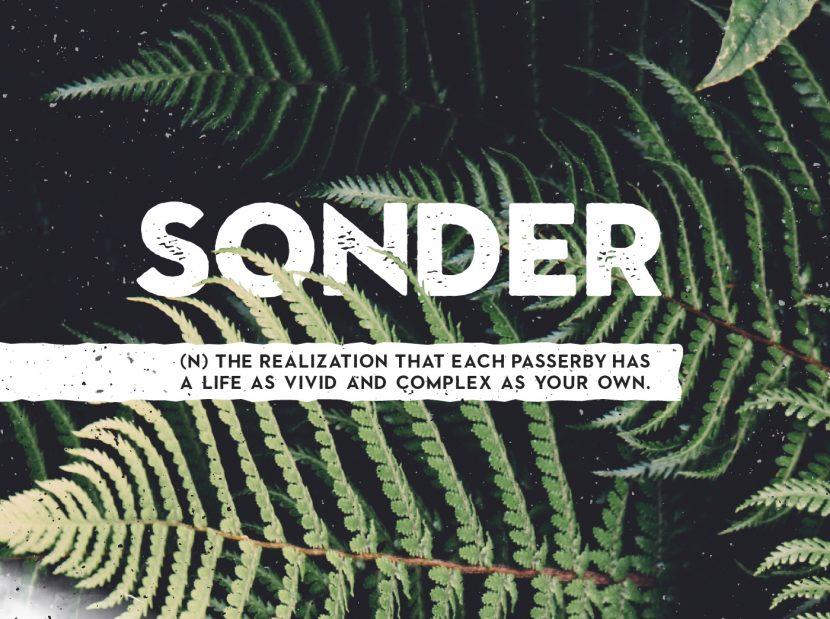 Sonder Free Font Family