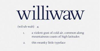 Williwaw Book Free Font - serif
