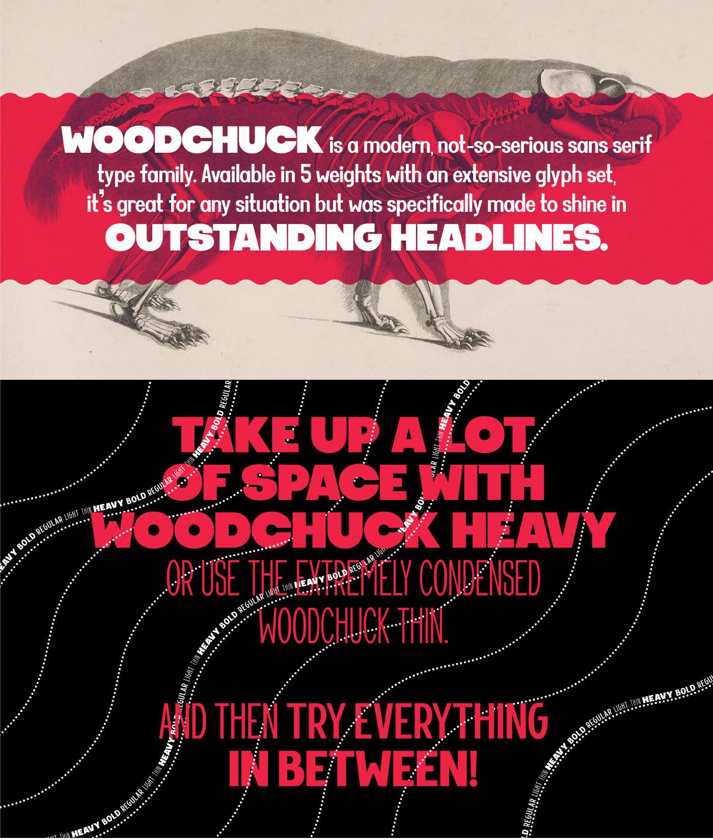 WOODCHUCK Free Font - sans-serif