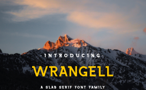 Wrangell Free Slab Serif Font -