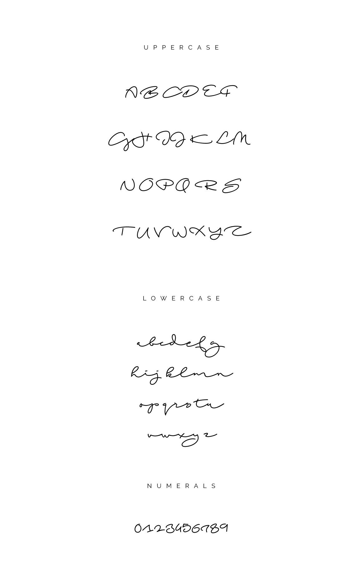 Beach Script Free Font - script