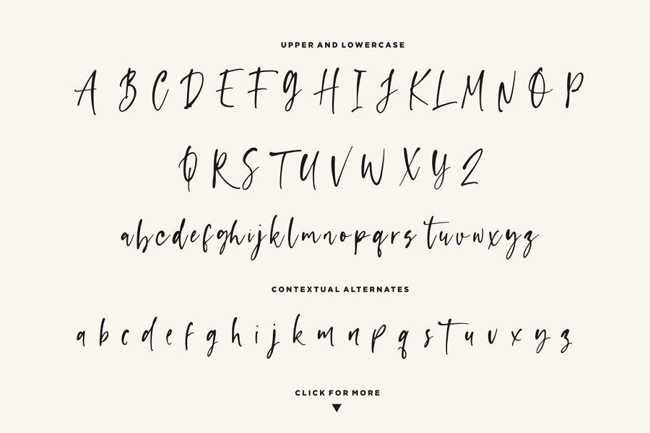Capappa Free Font - script