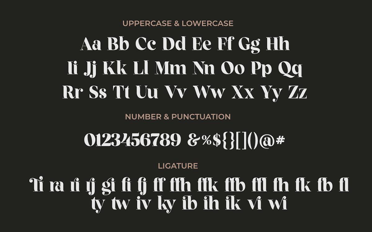 Fragille Free Font - serif