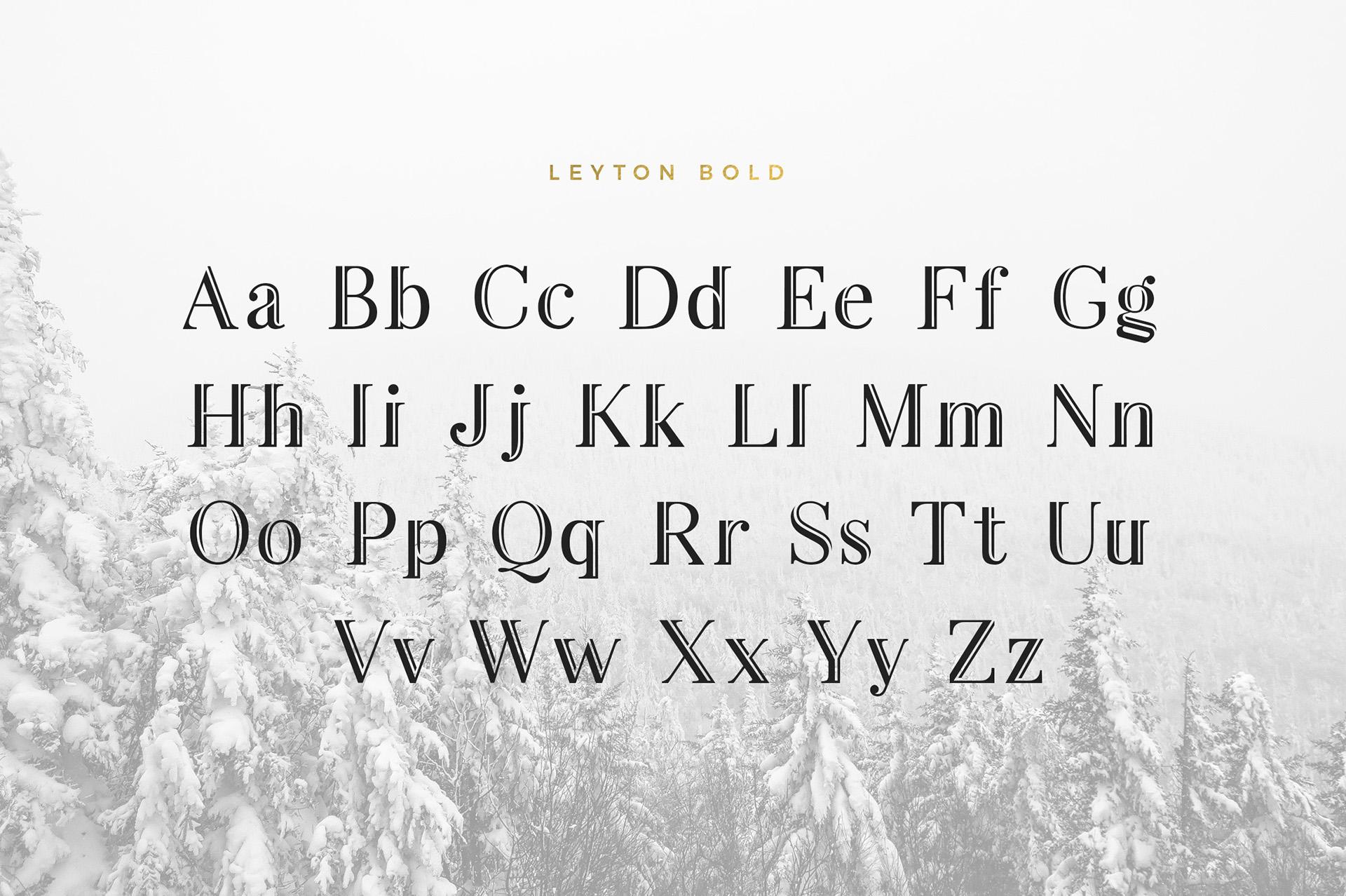 Leyton Free Font - serif