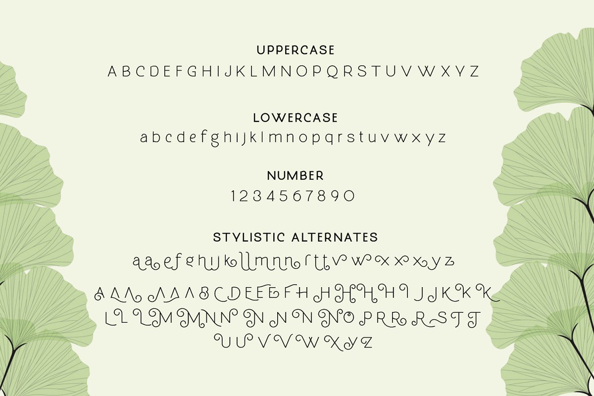 Molga Free Font - decorative-display