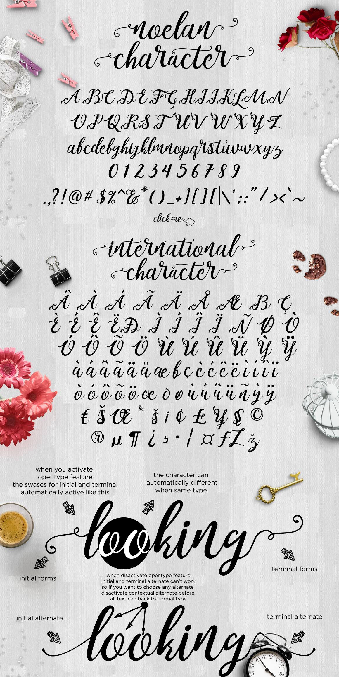 Noelan Free Script Font - script