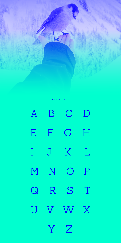 Piriquita Free Font -