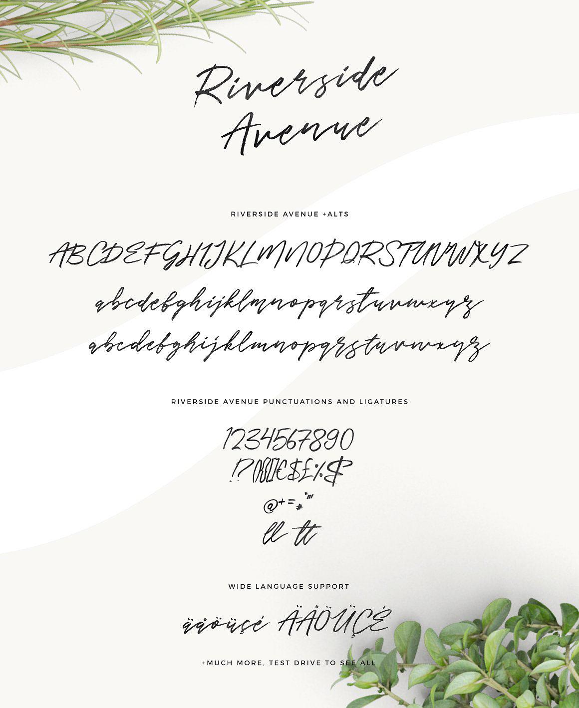 Riverside Avenue Free handwritten Font - script