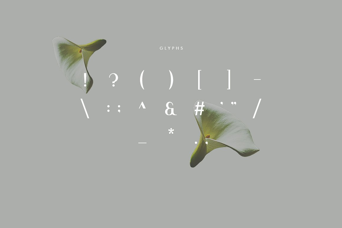 Viola Free Font - sans-serif
